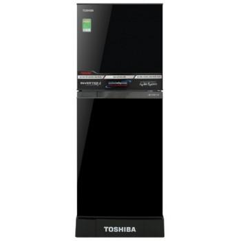 TOSHIBA GR-A25VM (UKG)